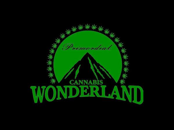 TEE-SHIRT CANNABIS WONDERLAND NOIR